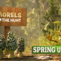 Morels the Hunt Spring