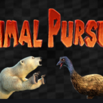 Primal Pursuit