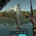 Ultimate Fishing Simulator Japan
